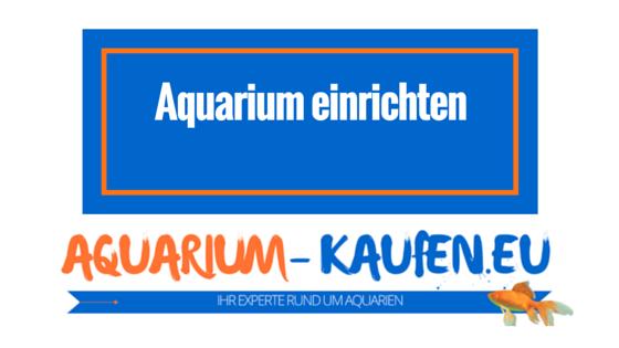 aquarium einrichten von der vorbereitung bis zu den fischen. Black Bedroom Furniture Sets. Home Design Ideas